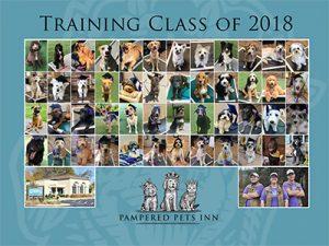 2018 dog training graduates